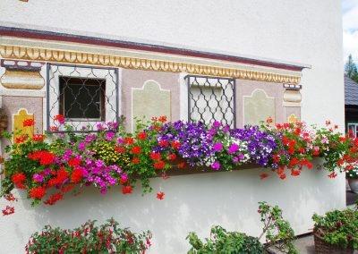 rund-um-den-aussichtsgasthof-dachsteinblick_15