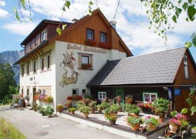 Rund um den Aussichtsgasthof Dachsteinblick