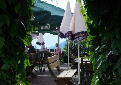 rund-um-den-aussichtsgasthof-dachsteinblick_blick-in-den-gastgarten